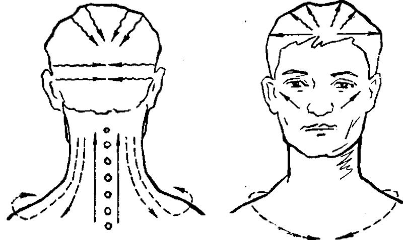 Массажные линии для выполнения массажа шеи